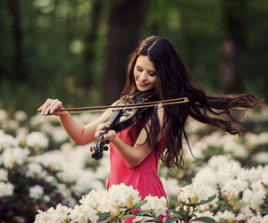 violin and flowers image