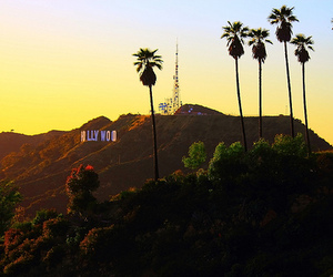 hollywood, sunset, and california image
