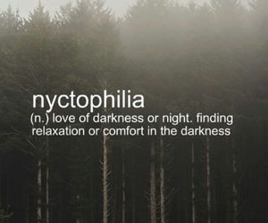 Darkness, night, and quote image
