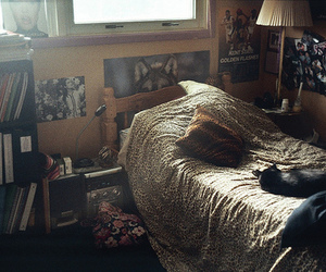 bed, cat, and room image