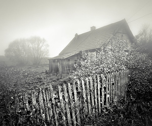 photography, country life, and urban & rural image