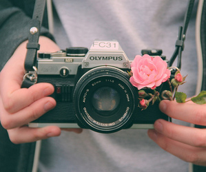 camera, love, and flowers image