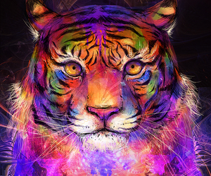 tiger, art, and color image
