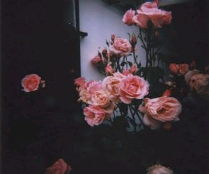 flowers, love, and indie image