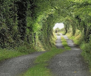 flickr, ireland, and road image