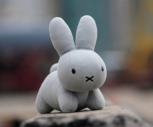 2006, miffy, and my favorite image