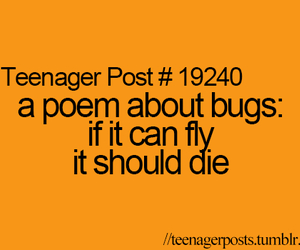 teenager post, bugs, and funny image