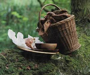 basket, forest, and food image