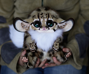 cute, animal, and sweet image