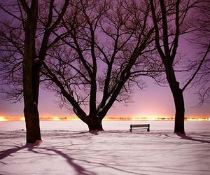 beauty, cold, and nature image