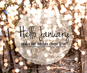 january, 2016, and winter image
