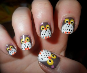 nails and owl image