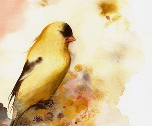 aquarell, bird, and Paper image