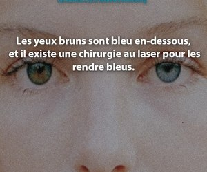 eye, eyes, and le saviez-vous ? image