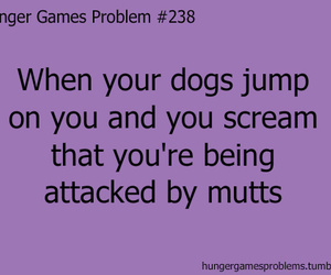the hunger games, hunger games, and mutts image