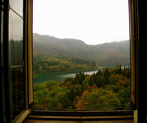 autumn, view, and window image