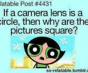 funny, camera, and square image