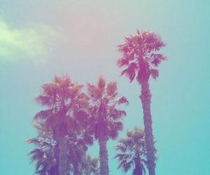cali, la, and vacation image