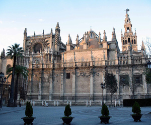 cathedral, gothic, and sevilla image