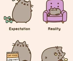 cat, pusheen, and reality image
