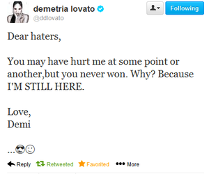 demi lovato and haters image