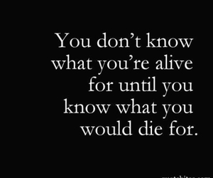 quote, alive, and die image