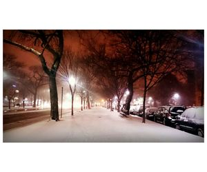 blizzard, nature, and snow image