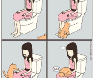 cat and bathroom image