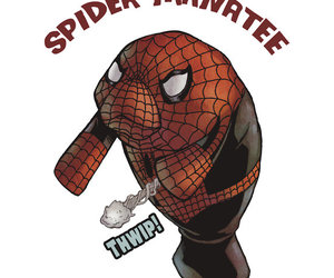 manatee, Marvel, and spider image