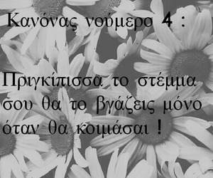 greek quotes and greek quotes flowers image