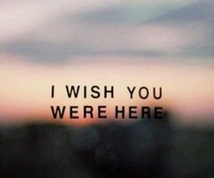 please, wish, and stay here image