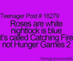 catching fire, hunger games, and teenager post image