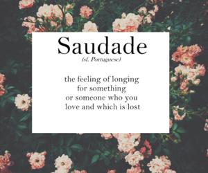 flower, saudade, and vintage image