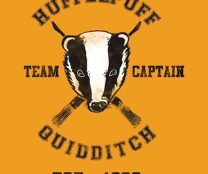 quidditch and hufflepuff image