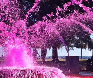 pink, water, and amazing image