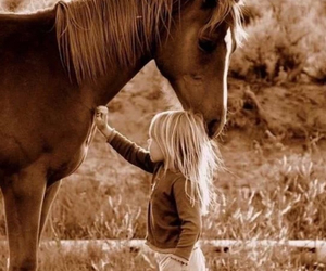 horse, country, and girl image