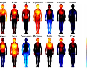 feelings, emotions, and body image