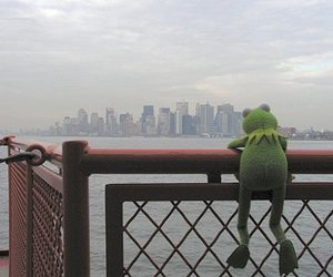 kermit and sea image