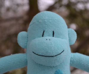 Sock Monkey, sockmonkey, and blue sock monkey image