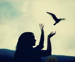 love, bird, and passenger image