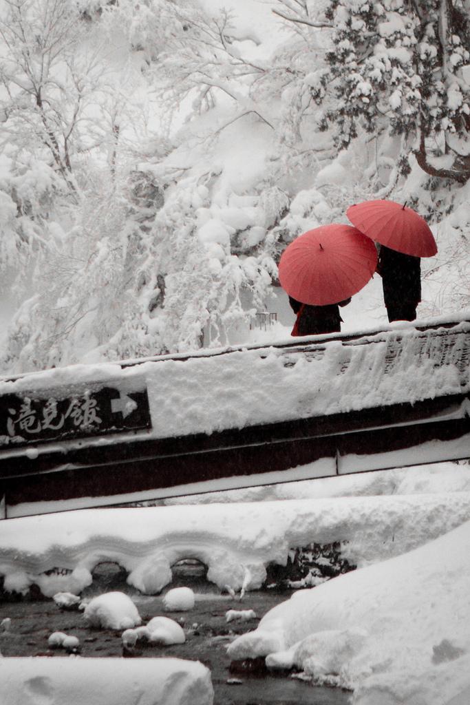 snow, umbrella, and japan image