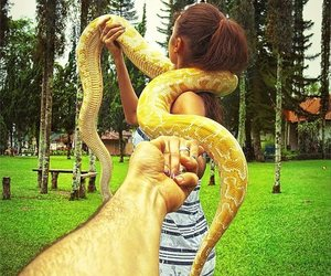 snake, couple, and travel image