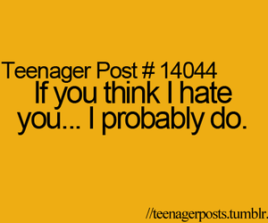 sarcasm, funny quotes, and hate you quotes image