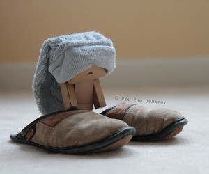 danbo and slippers image