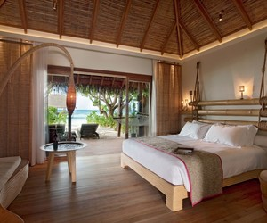beach umbrella, luxurious resort, and thatched roof image
