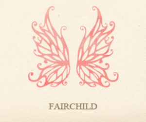 fairchild image