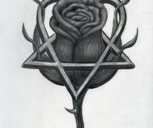 heartagram and rose image