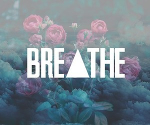 breathe, flowers, and rose image