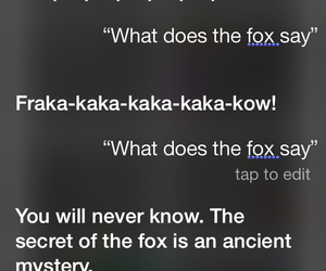 siri and what does the fox say image