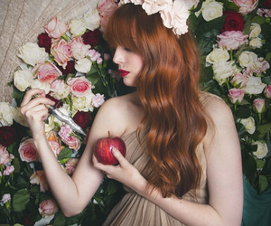 apple, photography, and floral image